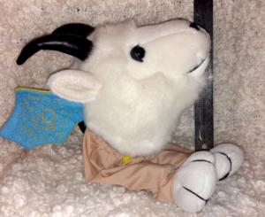 gotchyer-goat