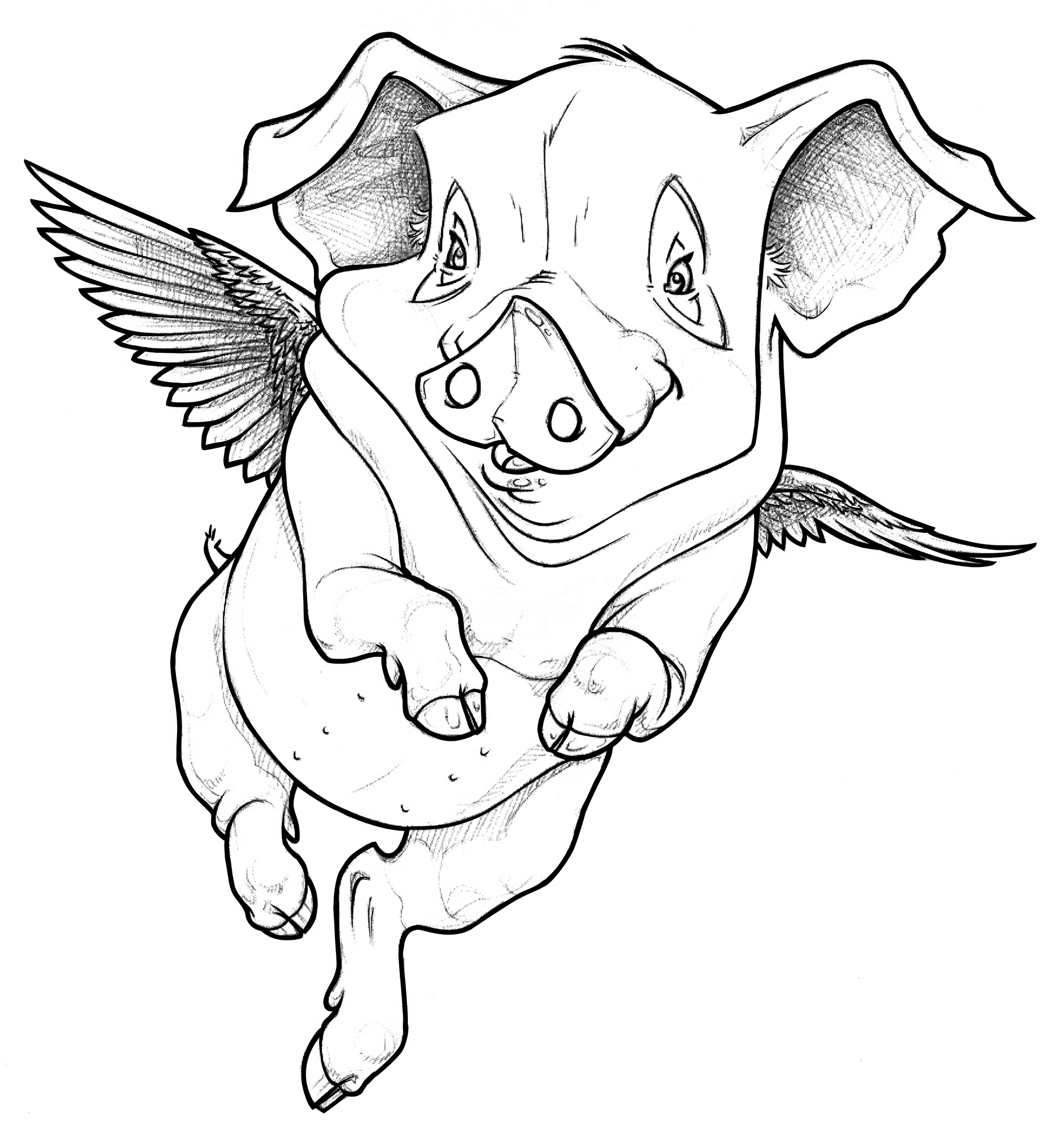 Piglet Line Drawing : Flying pig drawing pixshark images galleries